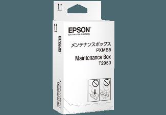 Produktbild EPSON C13T295000